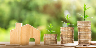 The Benefits of Investing in N.A Plots